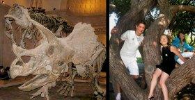 Triceratops, T-rex, TIm, Adina & Elizia Savage