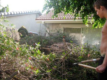 Gardening, Huntington Beach